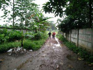 Tanah dijual di cibubur alternatif Lokasi : Belakang plaza cibubur Luas 10 ha Harga Rp 2 jt /m Hub : 0813 8162 0703 /david