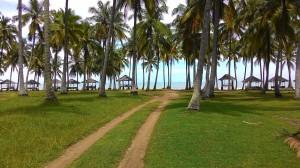Alamat : Jl. Raya Anyer Km. 35 Ciberem, Serang - Banten > Posisi : 800 meter setelah hotel sol marbella, sebelah condotel sahid, 500 meter sebelum hotel aston anyer > Legal : 3 buah SHM (atas nama 1 orang), SPPT, surat ijin keramaian dinas pariwisata > Luas : 2,8 hektar / 28.000 meter > Bentuk tanah : ada dalam foto.. > Ukuran : Lebar halaman muka 55 m Hal belakang/pantai 200 m > KDB 75%, GSB 3 meter, KLB 20 Lantai > Peruntukan : hotel, apartemen, resort, restoran, tempat wisata, kondominium, villa dll > Harga : Rp. 1,400,000/meter atau total Rp. 39,000,000,000 (NEGO) > NJOP : Rp. 348,000/m > DP minimal 30%, sisa termin pembayaran (NEGO) Serius minat hub : 0813 8162 0703 /david